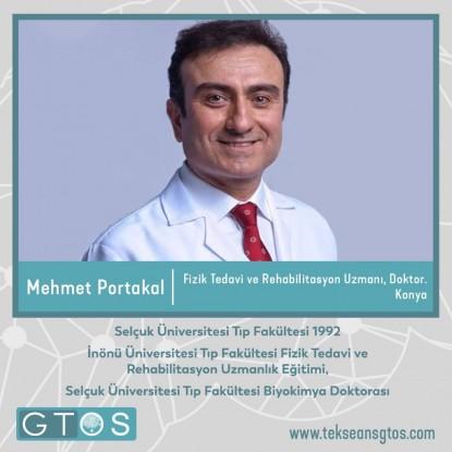 Mehmet Portakal